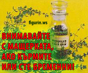 thymus-protivopokazania