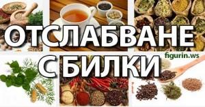 Как да си приготвим чай от коприва за отслабване?