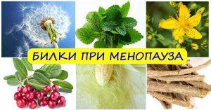 билки при менопауза симптоми лечение фигурин - 01