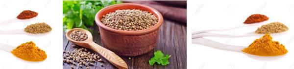 кориандър билка чай лечебни свойства рецепти