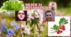 билки за бърз метаболизъм ускоряване