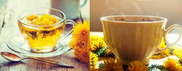 глухарче за отслабване, билки, чай, фигурин, мнения, форум