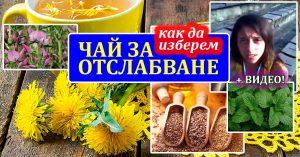 билков чай за отслабване и засилване на метаболизма
