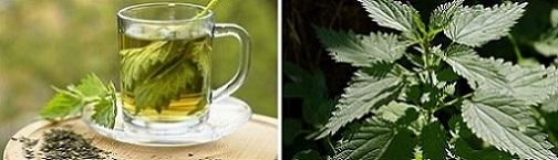 чай от коприва, отслабване, Фигурин