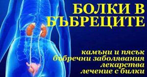 лечение на бъбреци с билки, с Фигурин