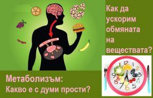 Какво е метаболизъм