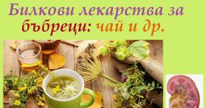 Билкови лекарства за бъбреци. Популярни чайове и комбинации