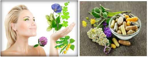 Билкови лекарства при менопауза: видове, цени. Билкови чайове, как работят
